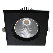 LED downlight kantelbaar