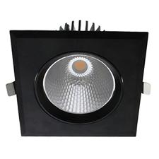 LED downlight kantelbaar